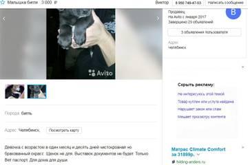 http://s3.uploads.ru/t/15o37.jpg