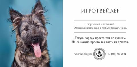 http://s3.uploads.ru/t/1JZzG.jpg