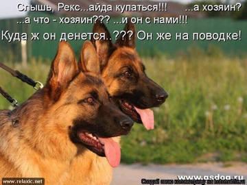 http://s3.uploads.ru/t/1wjDN.jpg