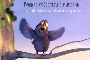 http://s3.uploads.ru/t/2FTvB.jpg
