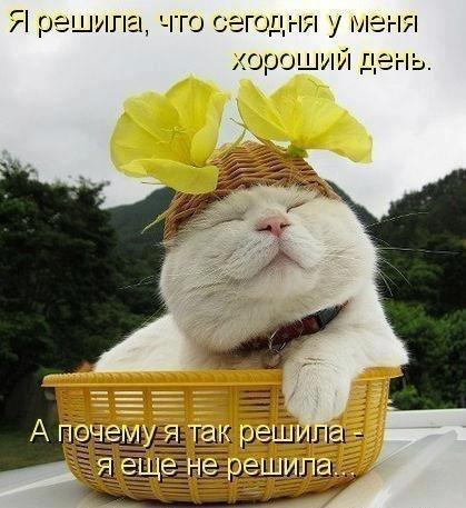 http://s3.uploads.ru/t/2TFYE.jpg