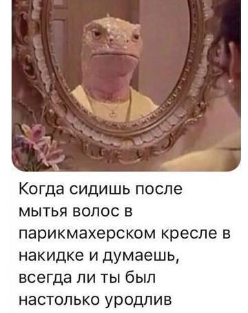 http://s3.uploads.ru/t/2fXet.jpg