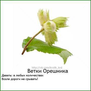 http://s3.uploads.ru/t/31ryY.jpg