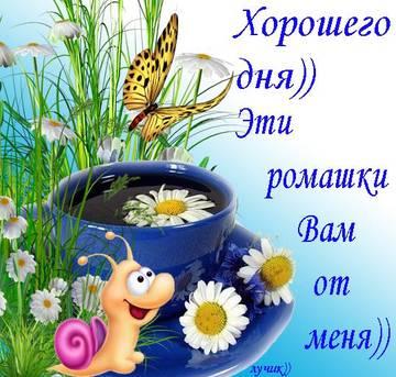 http://s3.uploads.ru/t/34sTx.jpg