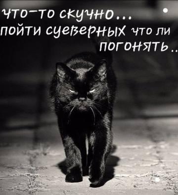 http://s3.uploads.ru/t/3l8P7.jpg