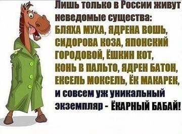 http://s3.uploads.ru/t/47Ces.jpg