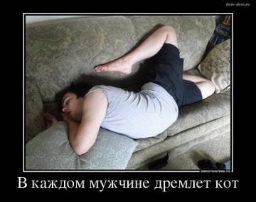 http://s3.uploads.ru/t/4EuzG.jpg