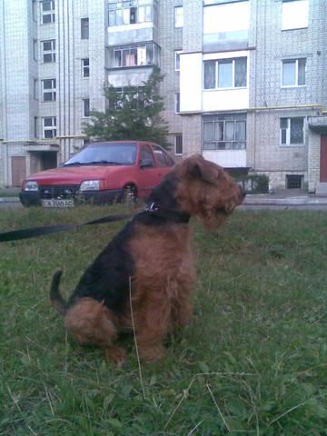 http://s3.uploads.ru/t/56RO0.jpg