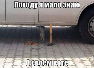 http://s3.uploads.ru/t/5D2xo.jpg