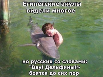 http://s3.uploads.ru/t/5q9te.jpg
