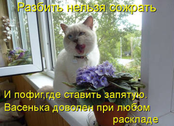 http://s3.uploads.ru/t/68hY1.jpg
