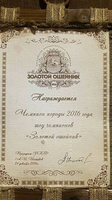 http://s3.uploads.ru/t/6g39C.jpg