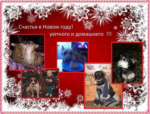 http://s3.uploads.ru/t/6j13l.jpg