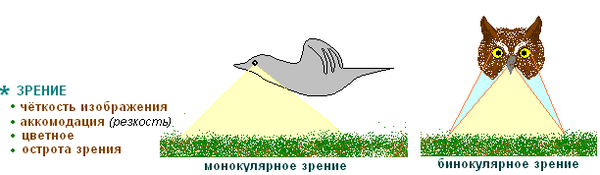 http://s3.uploads.ru/t/6nHD5.png