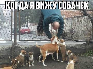 http://s3.uploads.ru/t/6uhNy.jpg