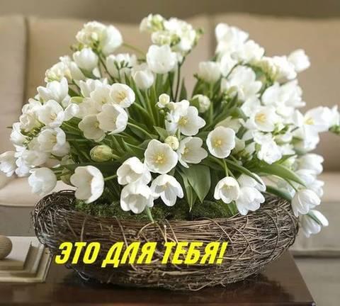 http://s3.uploads.ru/t/6un1F.jpg