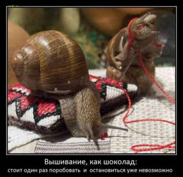 http://s3.uploads.ru/t/76KXz.jpg