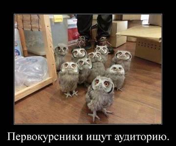 http://s3.uploads.ru/t/7OyoP.jpg