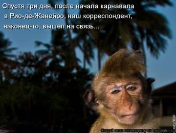 http://s3.uploads.ru/t/7Rl5C.jpg