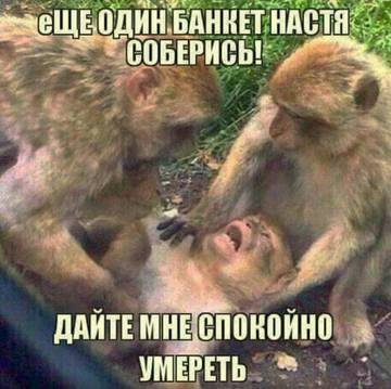 http://s3.uploads.ru/t/80crm.jpg