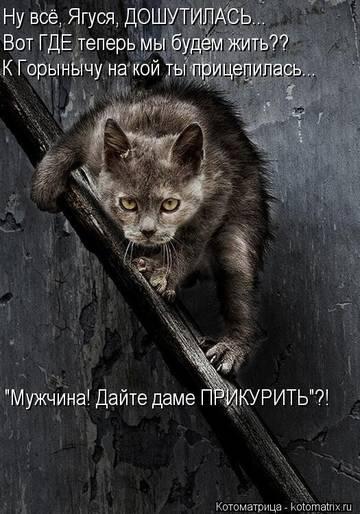 http://s3.uploads.ru/t/8UKRN.jpg