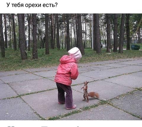 http://s3.uploads.ru/t/92Qs7.jpg