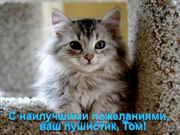 http://s3.uploads.ru/t/9IXvE.jpg