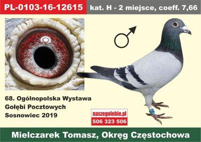 http://s3.uploads.ru/t/9PC1u.jpg