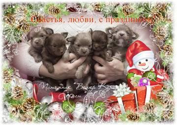 http://s3.uploads.ru/t/9eOAL.jpg