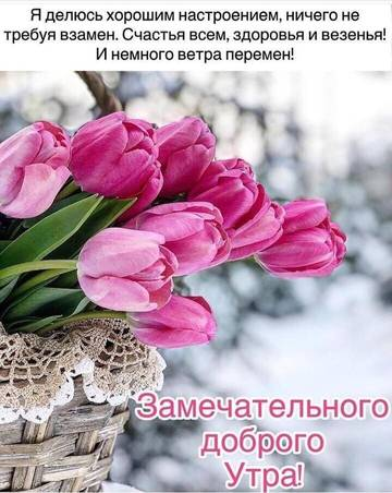 http://s3.uploads.ru/t/9g7RY.jpg