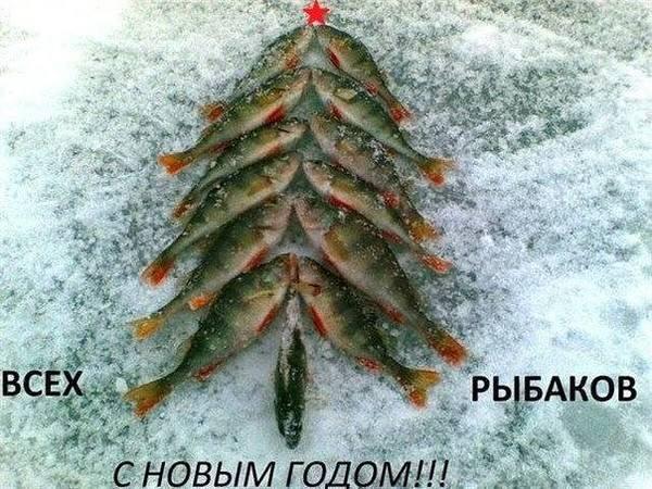 http://s3.uploads.ru/t/9mDns.jpg