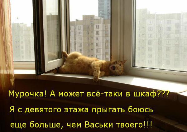http://s3.uploads.ru/t/9vJRs.jpg