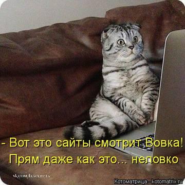 http://s3.uploads.ru/t/9xBqR.jpg