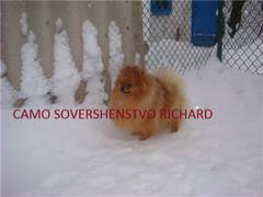 http://s3.uploads.ru/t/APJgY.jpg