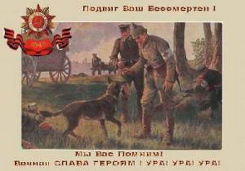 http://s3.uploads.ru/t/ASUWj.jpg