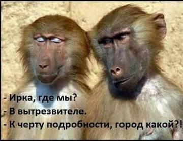 http://s3.uploads.ru/t/AYVjq.jpg