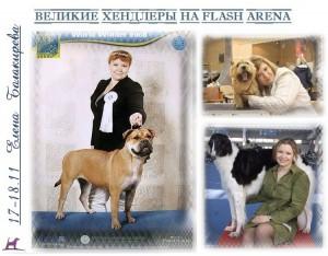 http://s3.uploads.ru/t/AsVpi.jpg