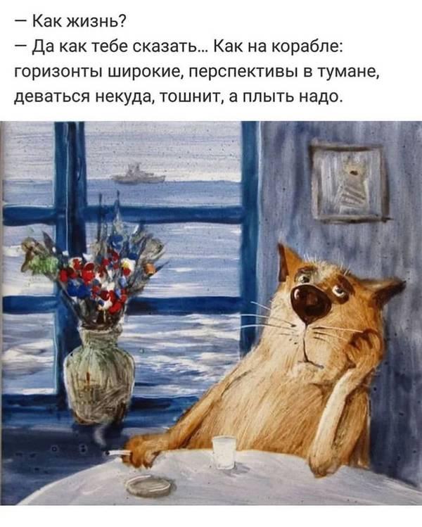 http://s3.uploads.ru/t/AxKMO.jpg