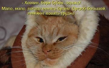 http://s3.uploads.ru/t/BYoPq.jpg