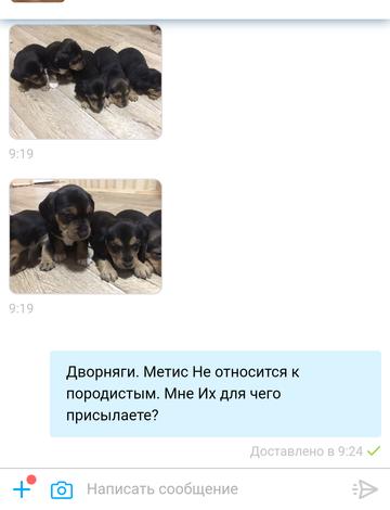 http://s3.uploads.ru/t/C1PHt.png