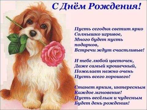 http://s3.uploads.ru/t/CeLyu.jpg