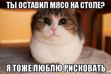 http://s3.uploads.ru/t/DAbrx.jpg