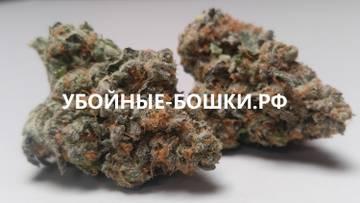 http://s3.uploads.ru/t/DFfkx.jpg