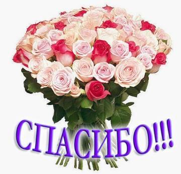 http://s3.uploads.ru/t/DchxX.jpg