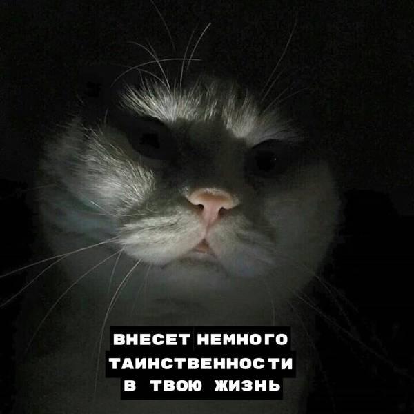 http://s3.uploads.ru/t/DntPH.jpg