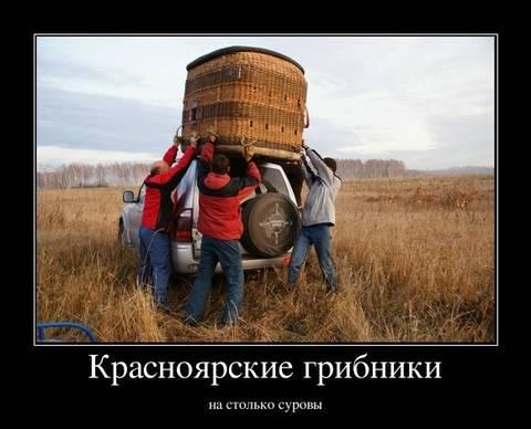 http://s3.uploads.ru/t/DsUwT.jpg