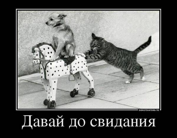 http://s3.uploads.ru/t/E9y2h.jpg