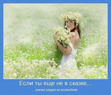 http://s3.uploads.ru/t/EOHGK.jpg