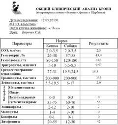 http://s3.uploads.ru/t/EQfhZ.jpg