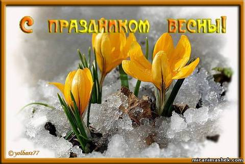 http://s3.uploads.ru/t/EXgye.jpg